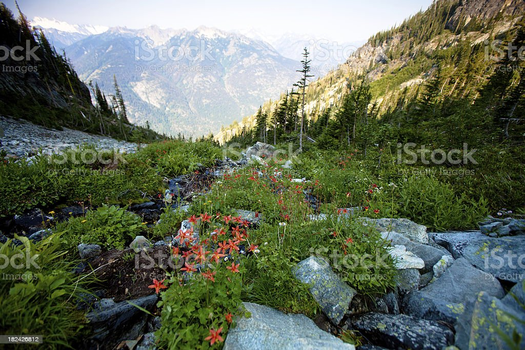 North Cascades National Park stock photo