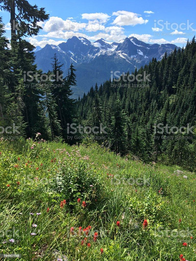 North Cascades Summer stock photo