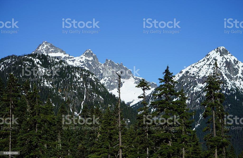 North Cascades Wilderness stock photo