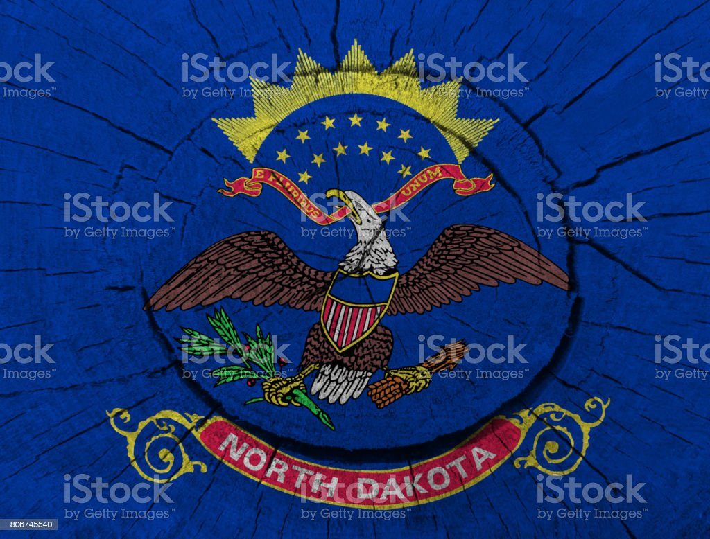 North Dakota State flag painted on a tree stump stock photo