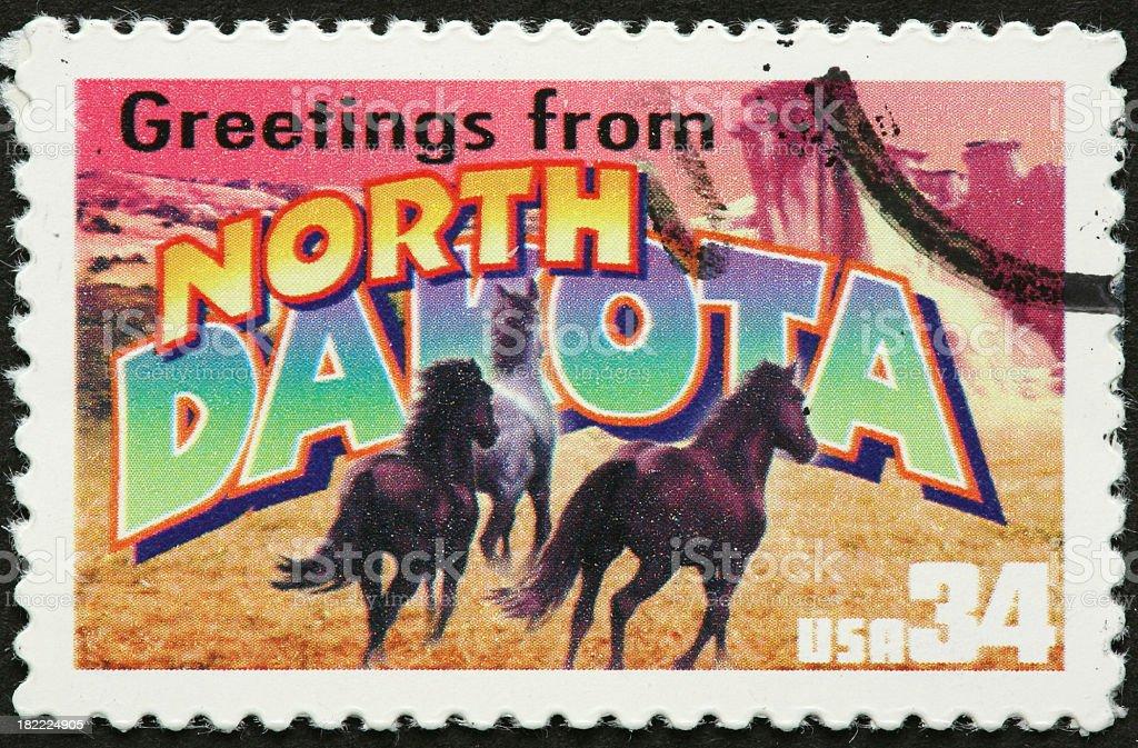 North Dakota wild horses royalty-free stock photo