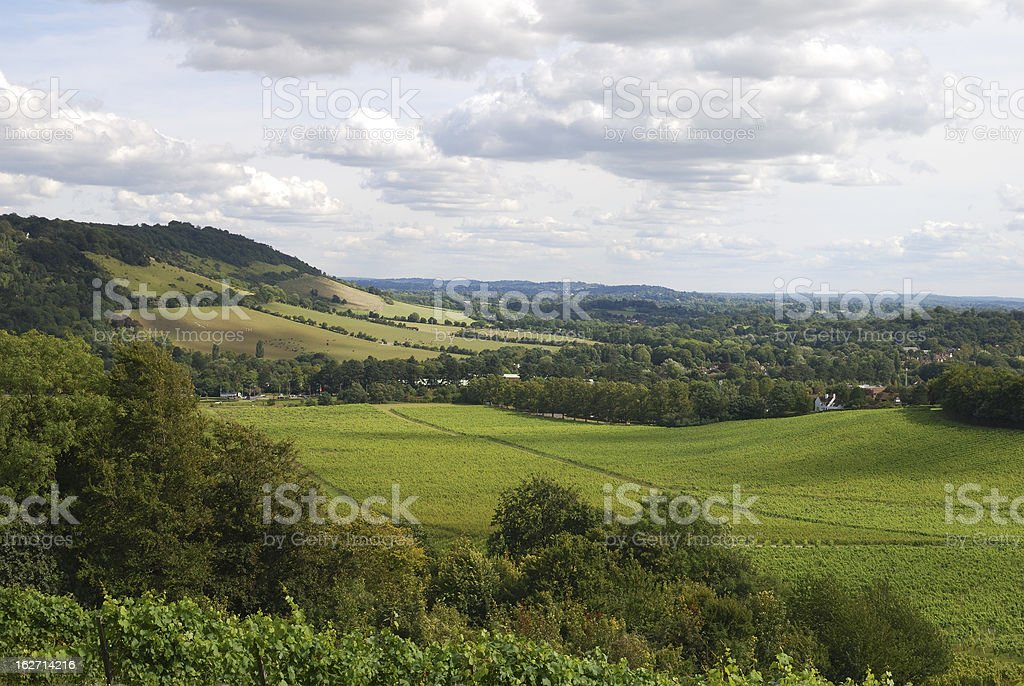North Downs countryside. Dorking. Surrey. England stock photo