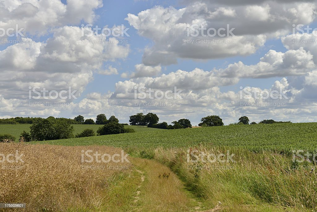 North Essex right of way. royalty-free stock photo