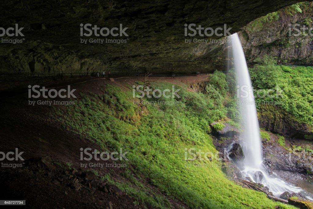 North Falls, Silver Falls State Park stock photo