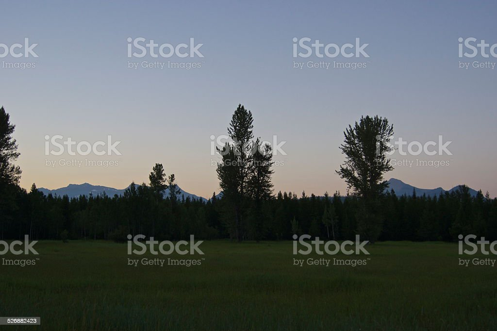 North Flathead Meadow Dusk stock photo