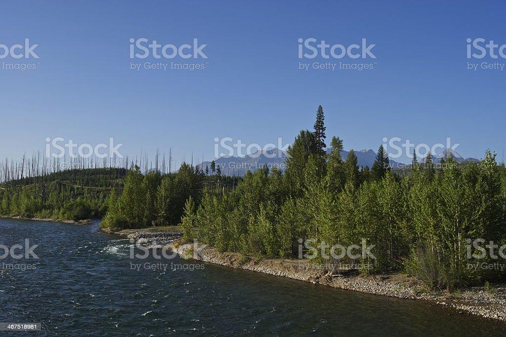 North Flathead River stock photo