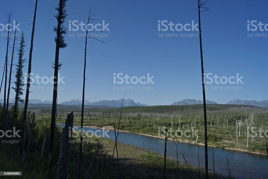North Flathead River stock photo
