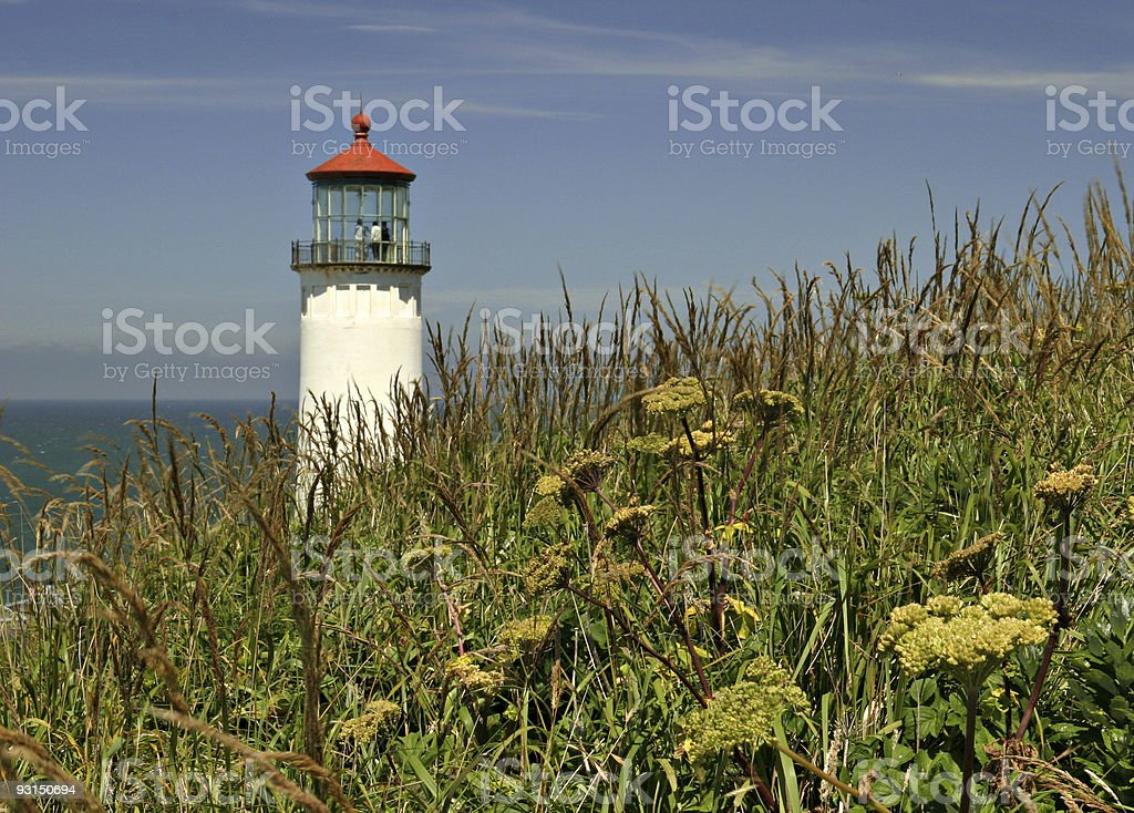 North Head Lighthouse And Grassy Foreground, Washington State stock photo
