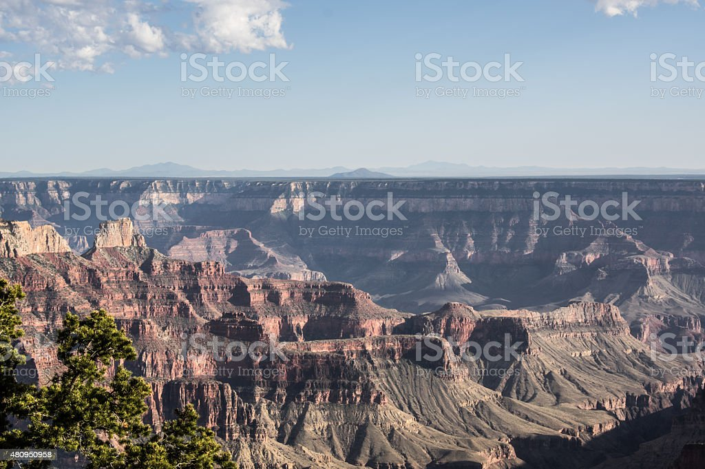 North Rim of the Grand Canyon royalty-free stock photo