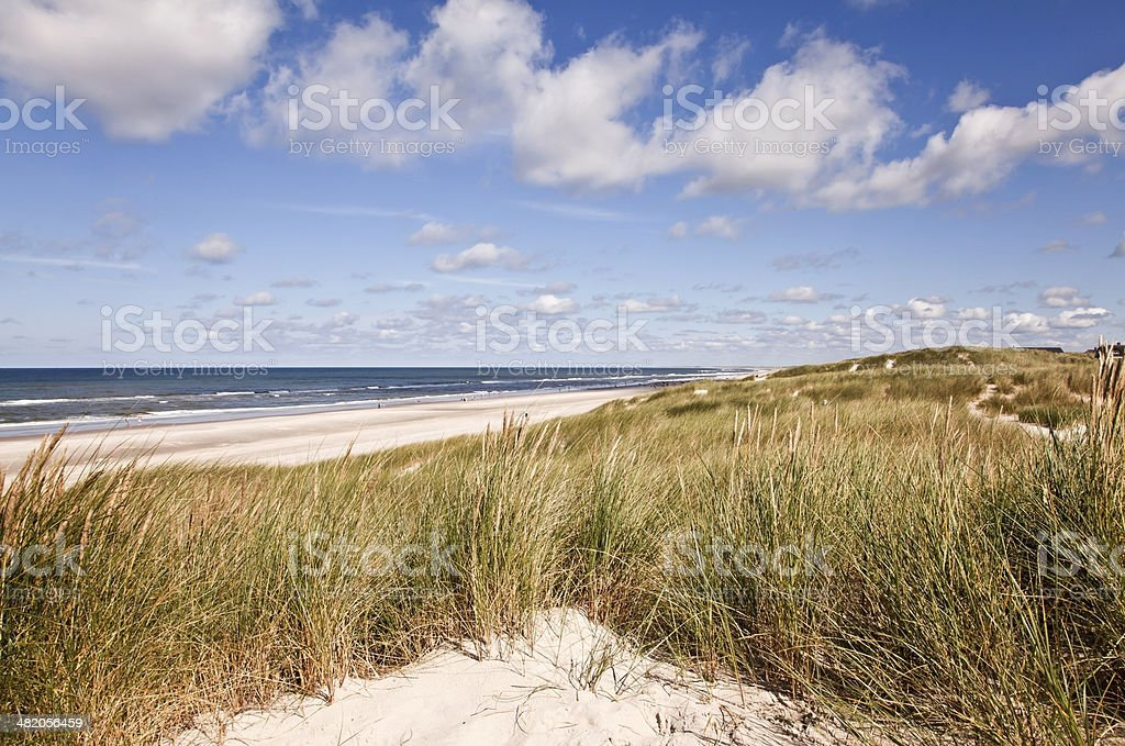 North Sea dunes. stock photo