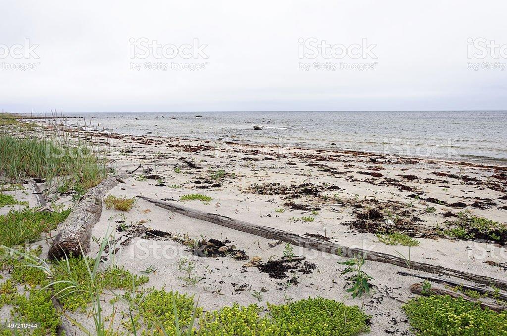 North seascape, White Sea stock photo