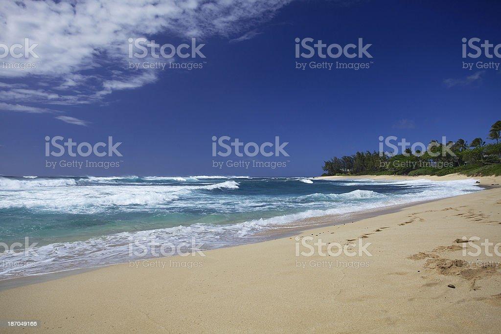 North Shore beach scape. royalty-free stock photo