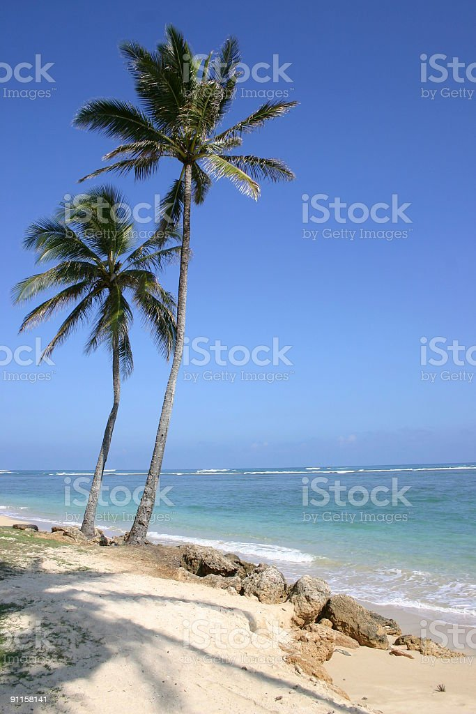 North Shore of Oahu royalty-free stock photo