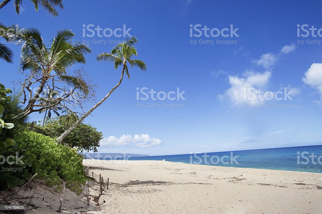 North Shore royalty-free stock photo