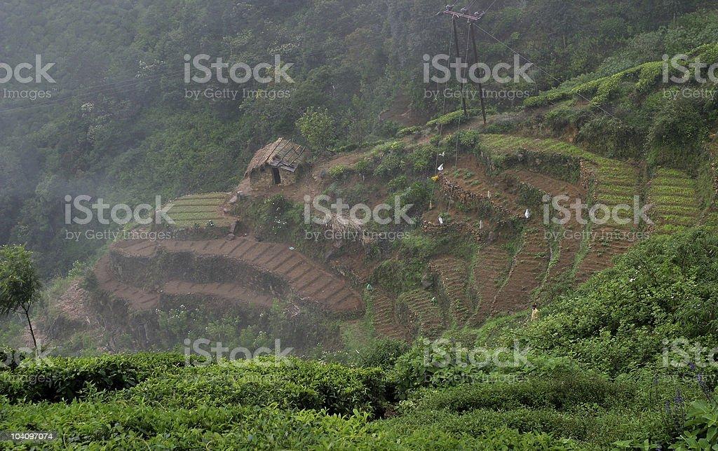 North Sri Lanka country side royalty-free stock photo