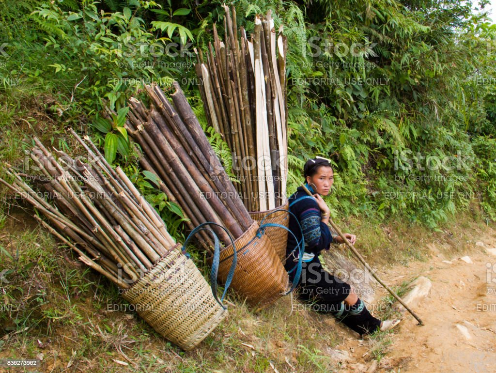 North Vietnamese woman rests with full baskets of sticks stock photo