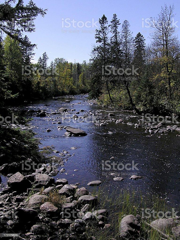 North Woods stock photo