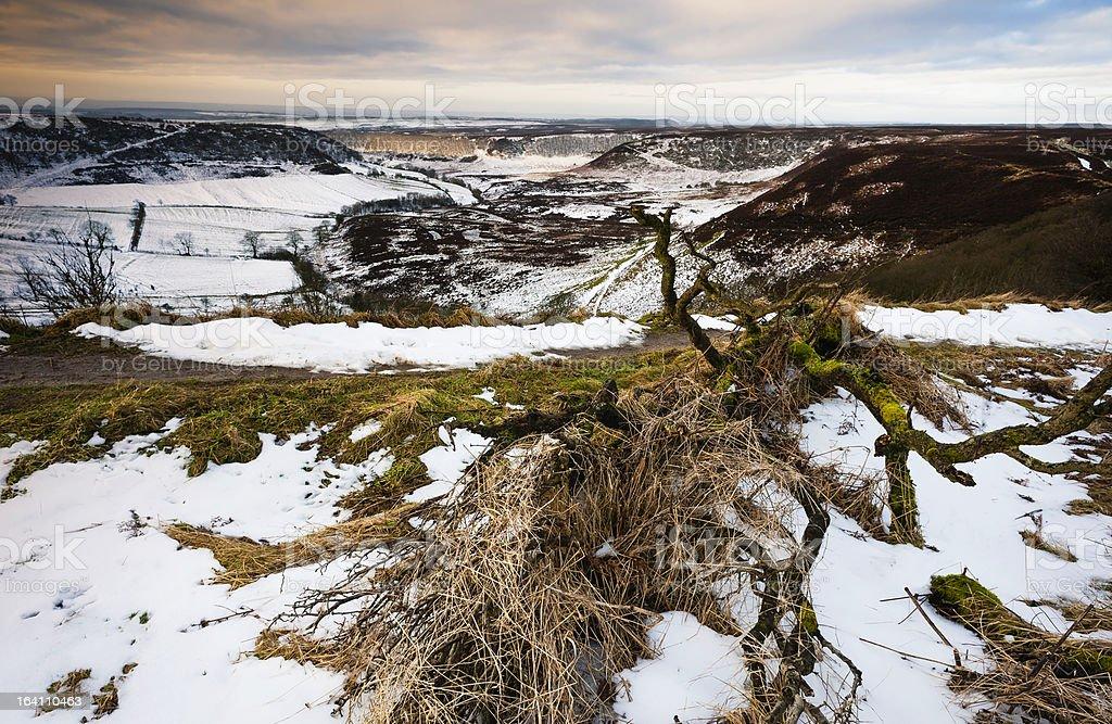 North York Moors, Goathland, Yorkshire, UK. royalty-free stock photo