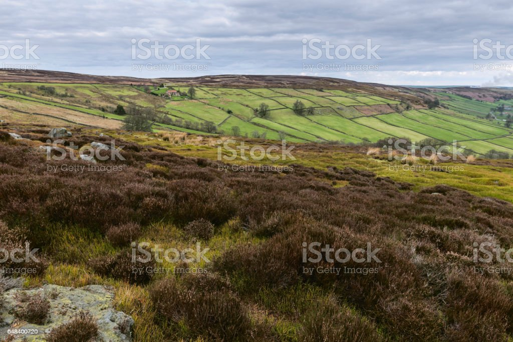 North York Moors in early spring, Glaisdale, Yorkshire, UK. stock photo