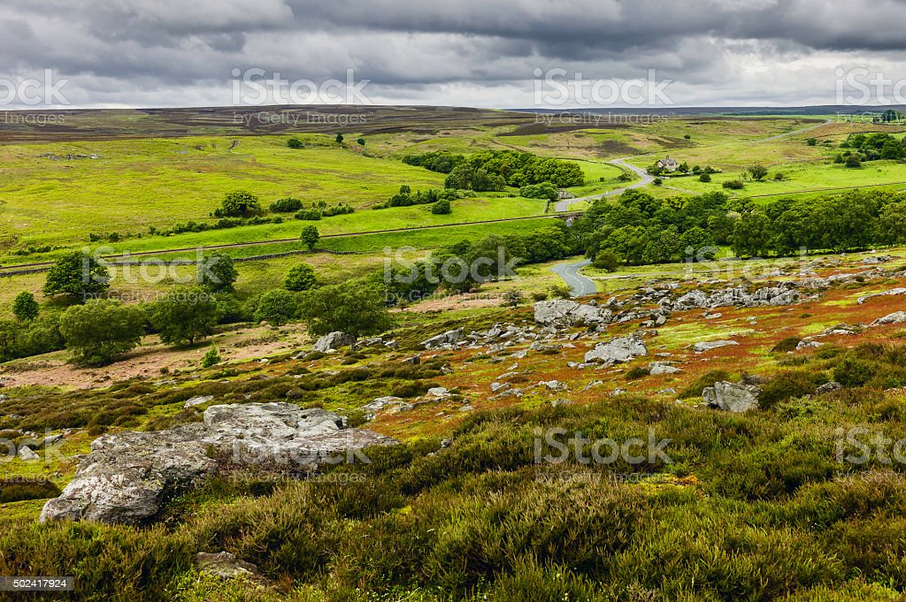 North York Moors in spring, Goathland, Yorkshire, UK. stock photo