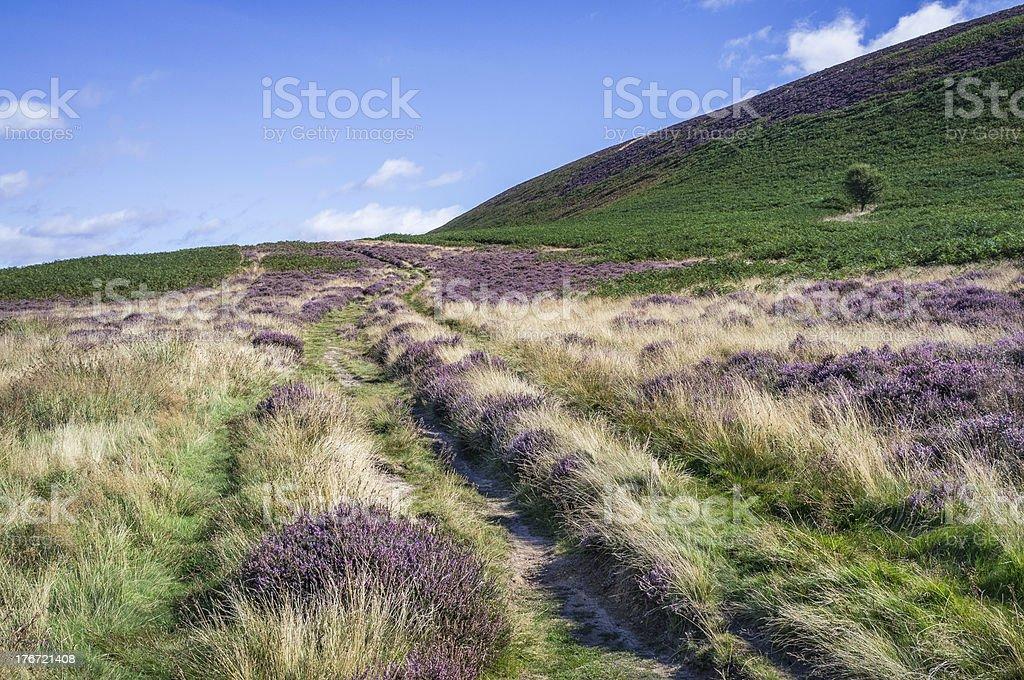 North York Moors near Levisham and Goathland, Yorkshire, UK. royalty-free stock photo