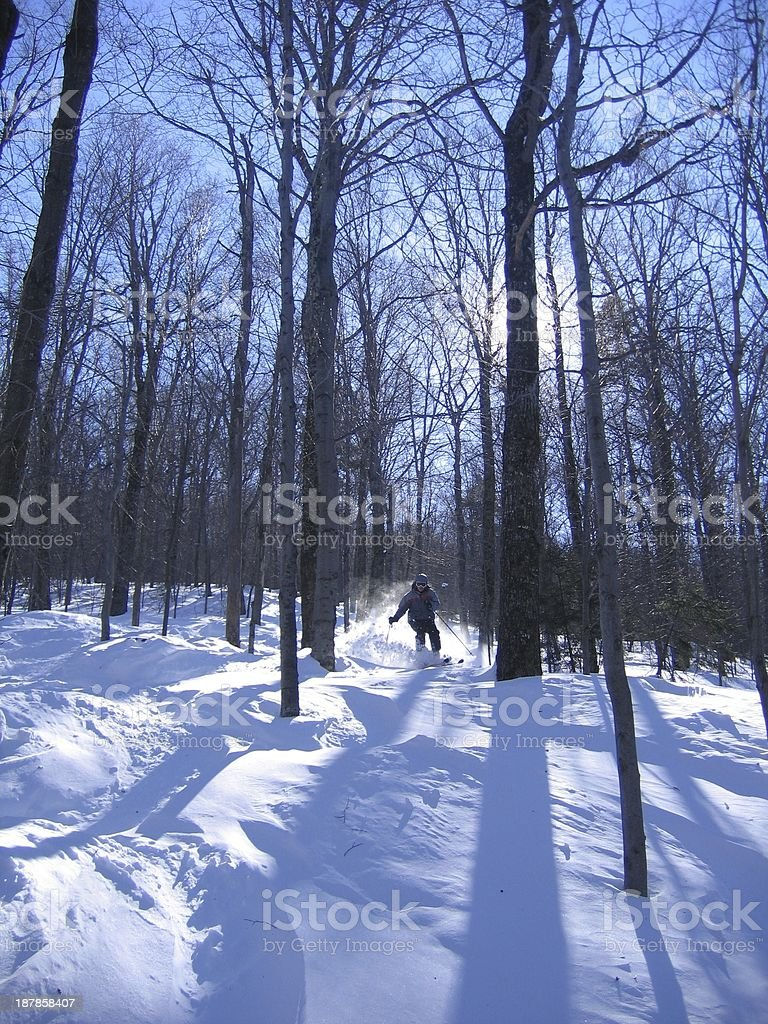 Northeast Powder Tree Skiing stock photo