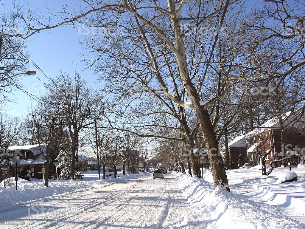 Northeastern Blizzard - Fort Lee 2006 royalty-free stock photo