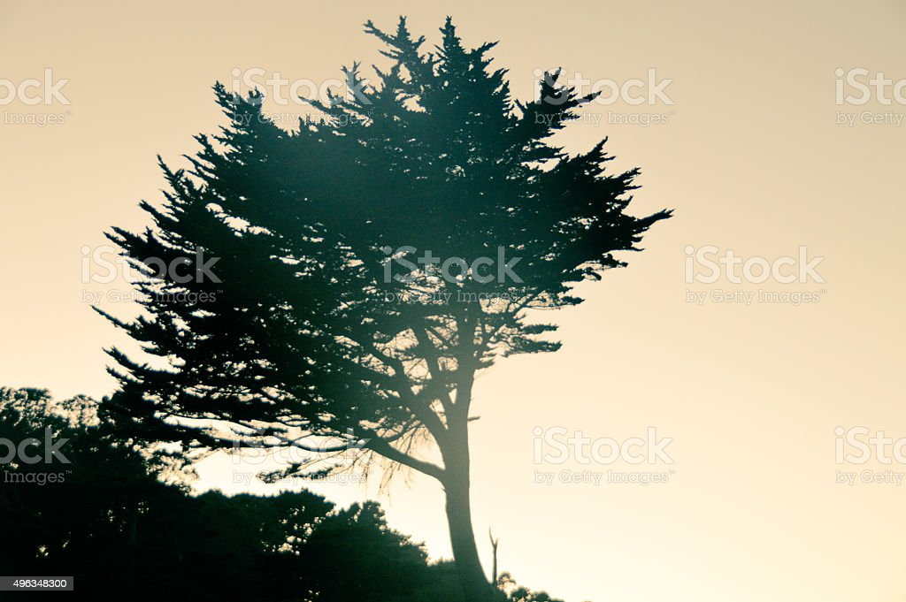 Northern California coastline sunset stock photo