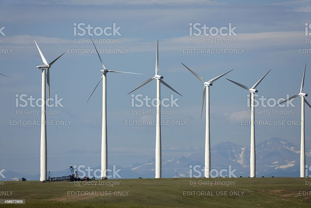 Northern Colorado Wind Farm with Rocky Mountains royalty-free stock photo