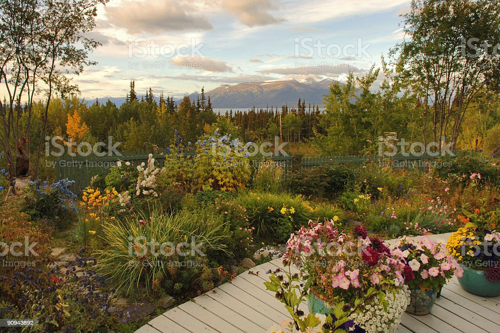 northern garden stock photo