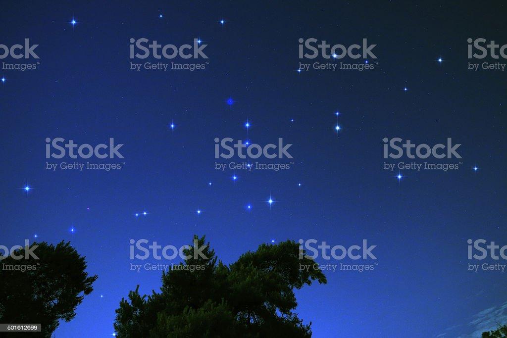 Northern Hemisphere Constellations royalty-free stock photo