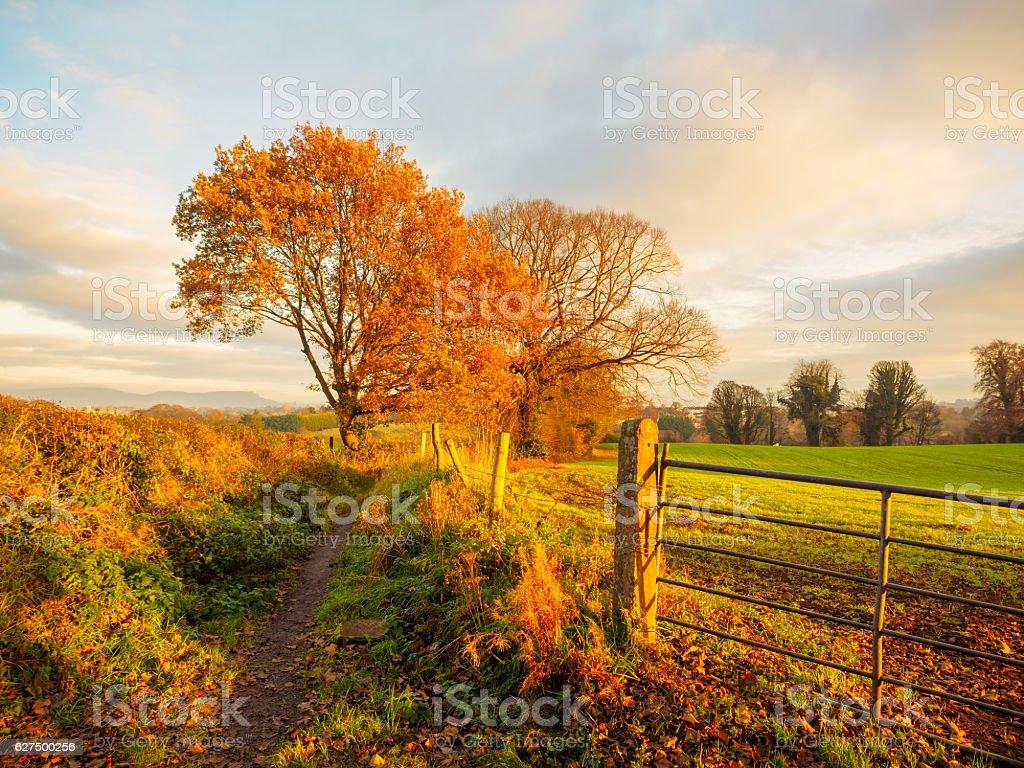 Northern Ireland countryside sunrise