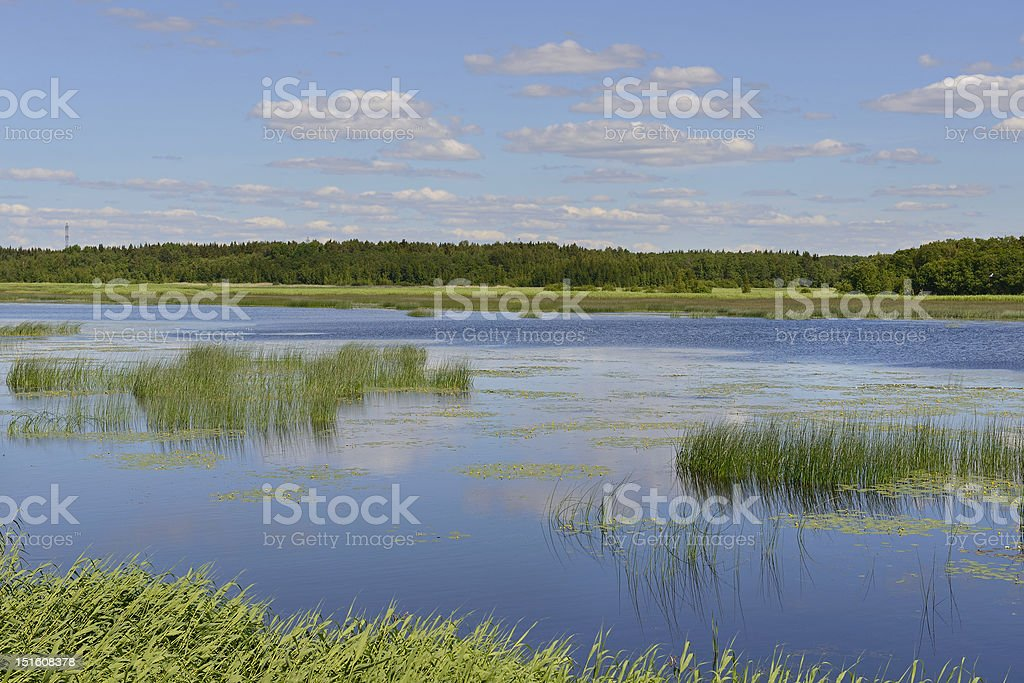 Northern landscape with blue lake stock photo
