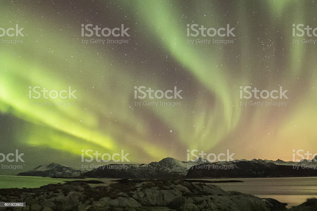 Northern light (aurora borealis) in a fjord stock photo
