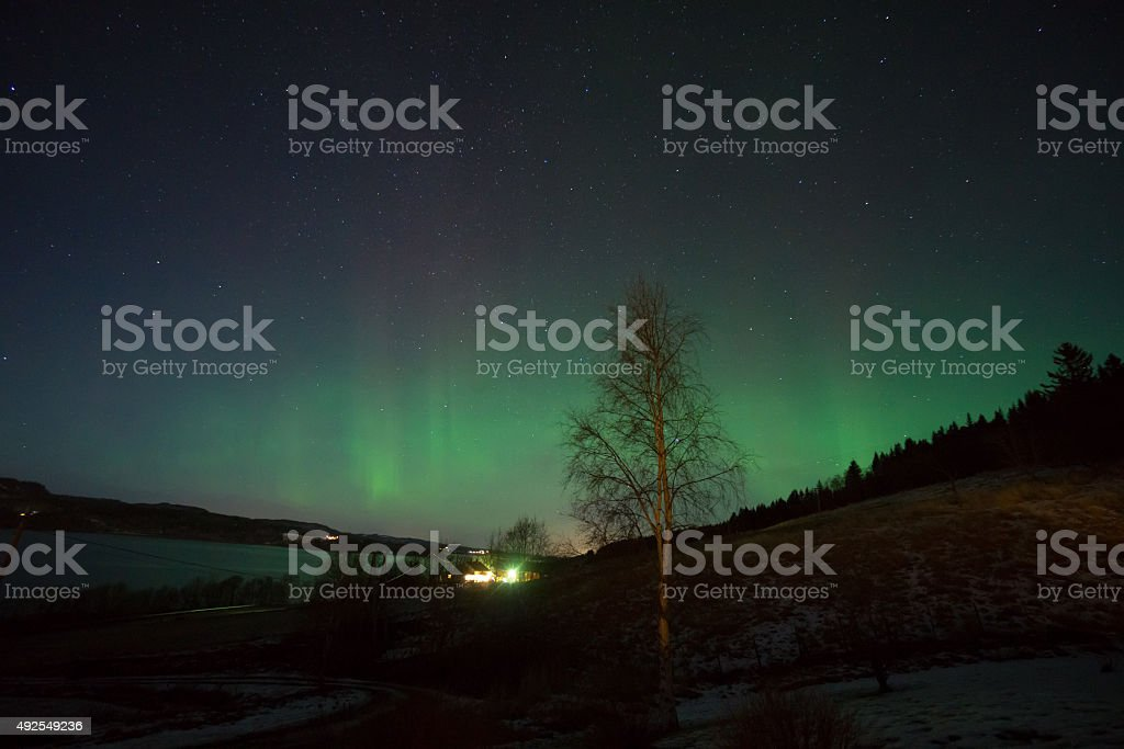 Northern lights in the Norwegian countryside royalty-free stock photo
