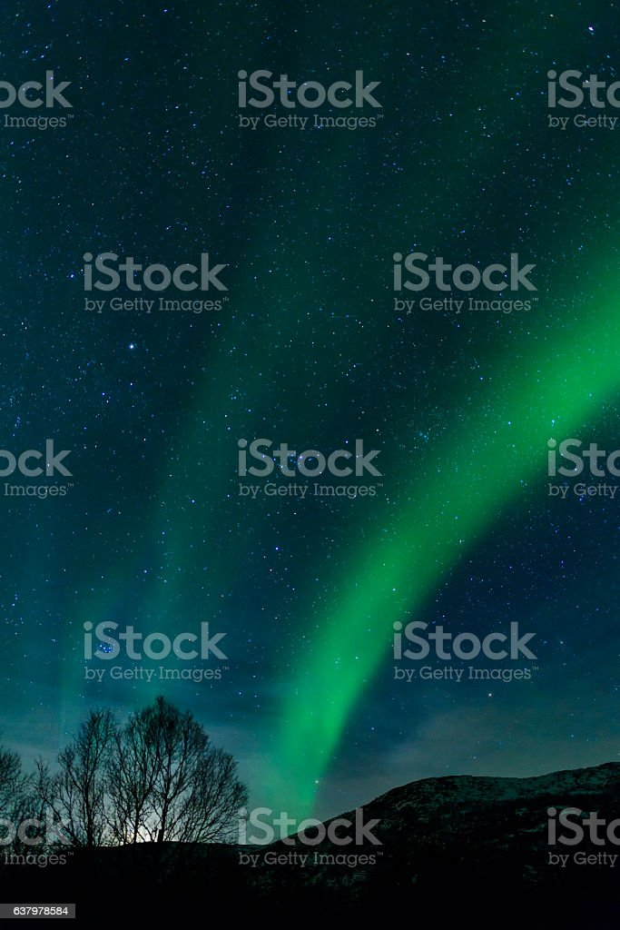 Northern Lights over the Vesteralen coast in Norway during winter stock photo