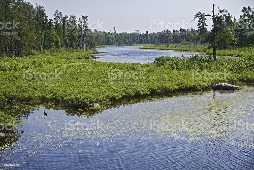 Northern Minnesota royalty-free stock photo