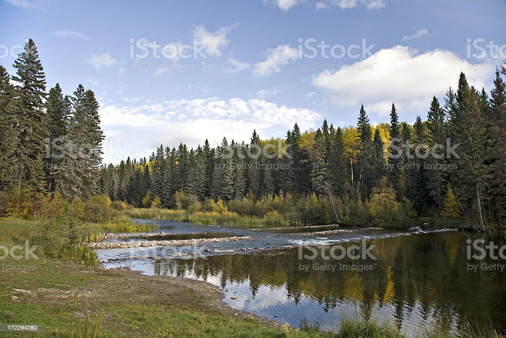 Northern River and Boreal Forest stock photo