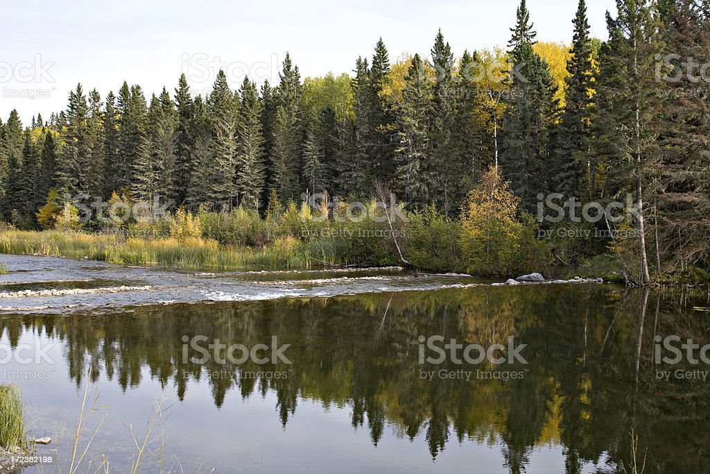Northern River and Reflections royalty-free stock photo