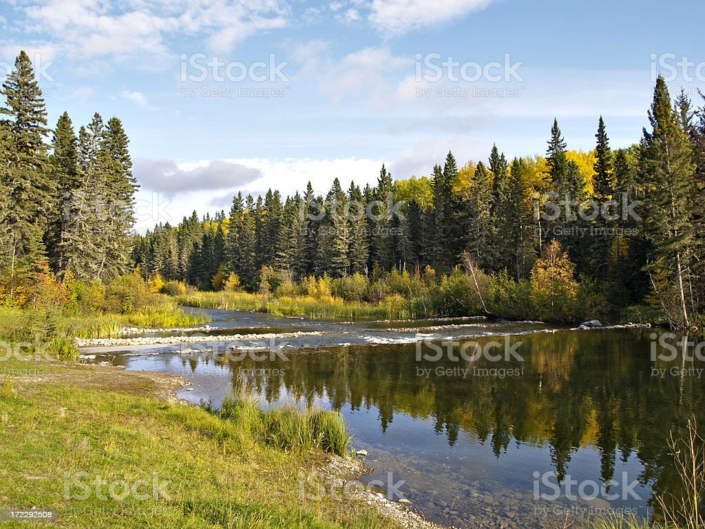 Northern River in Boreal Forest stock photo