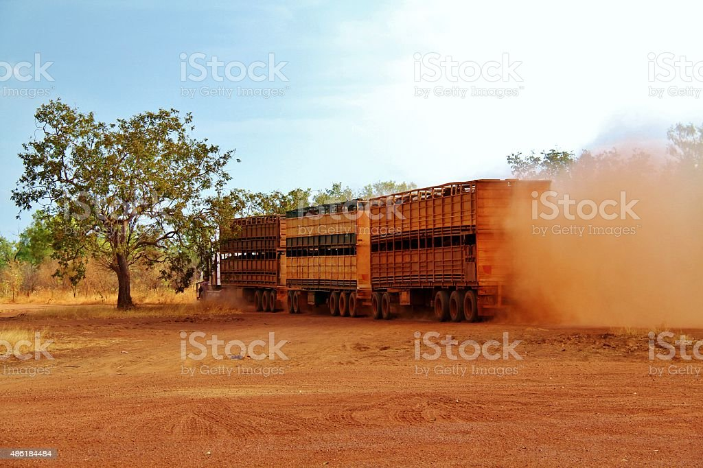 Northern Territory cattle road train stock photo