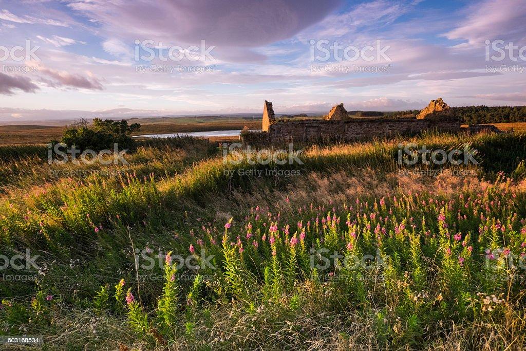 Northumberland near Hadrian's Wall stock photo