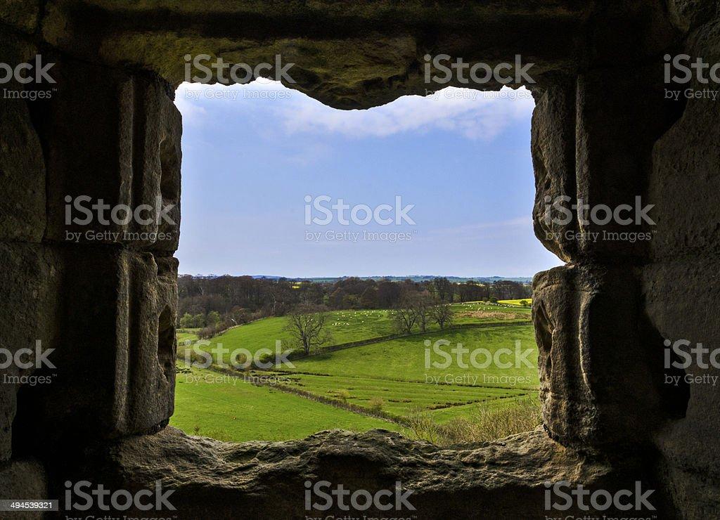 Northumbrian Countryside stock photo