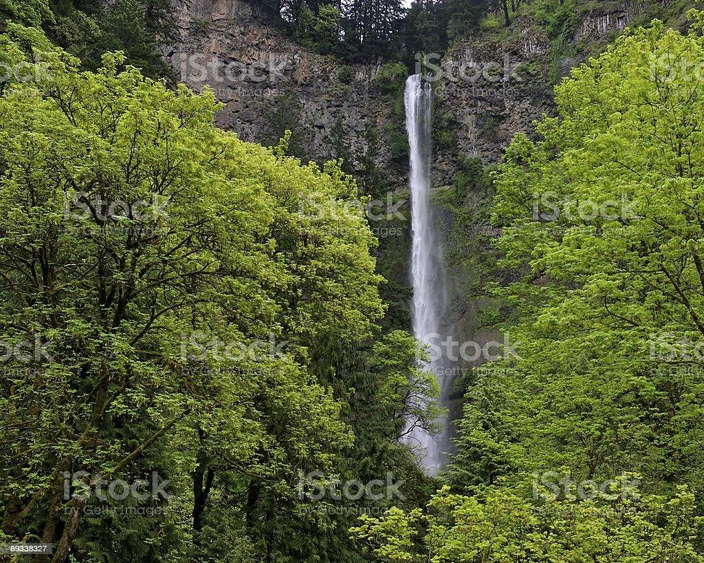 Northwest Falls royalty-free stock photo