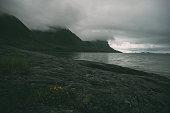 Norway fjord wilderness