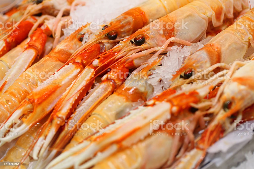 Norway Lobster on sale at fish market stock photo