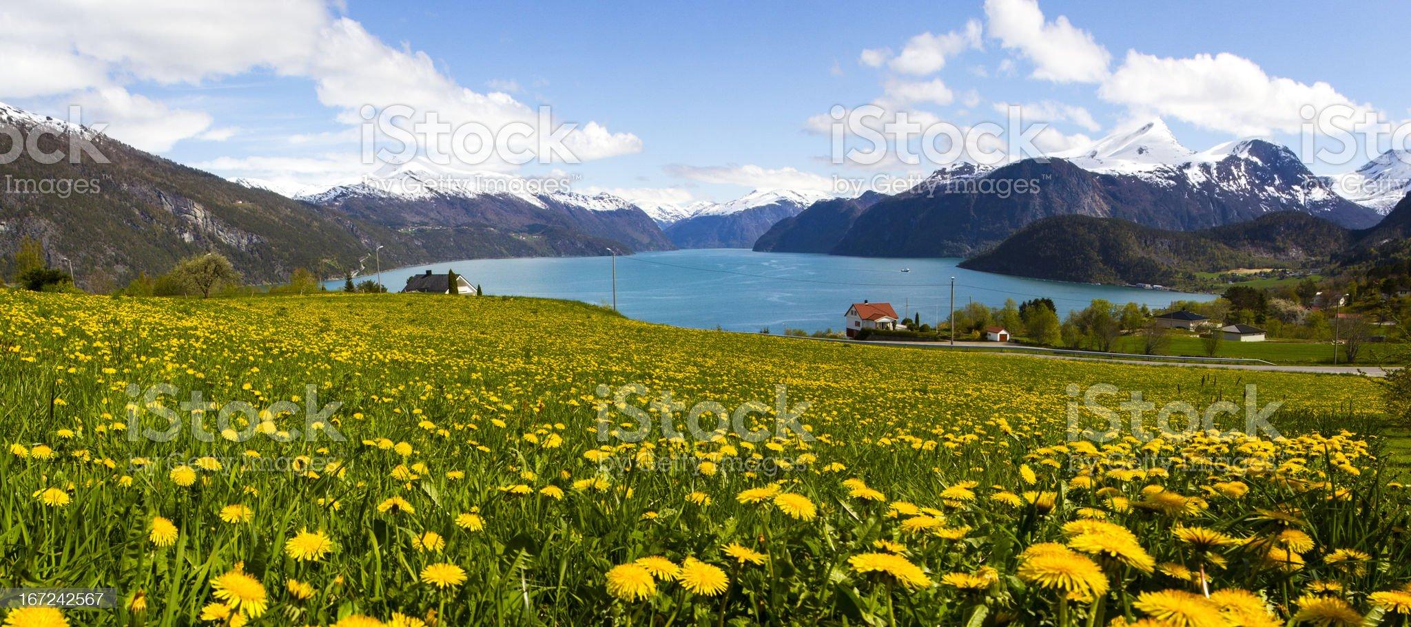 Norwegian Fjord in Sunnmore royalty-free stock photo