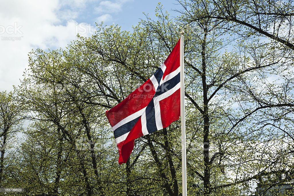 Norwegian flag  against  green trees and sky in spring stock photo