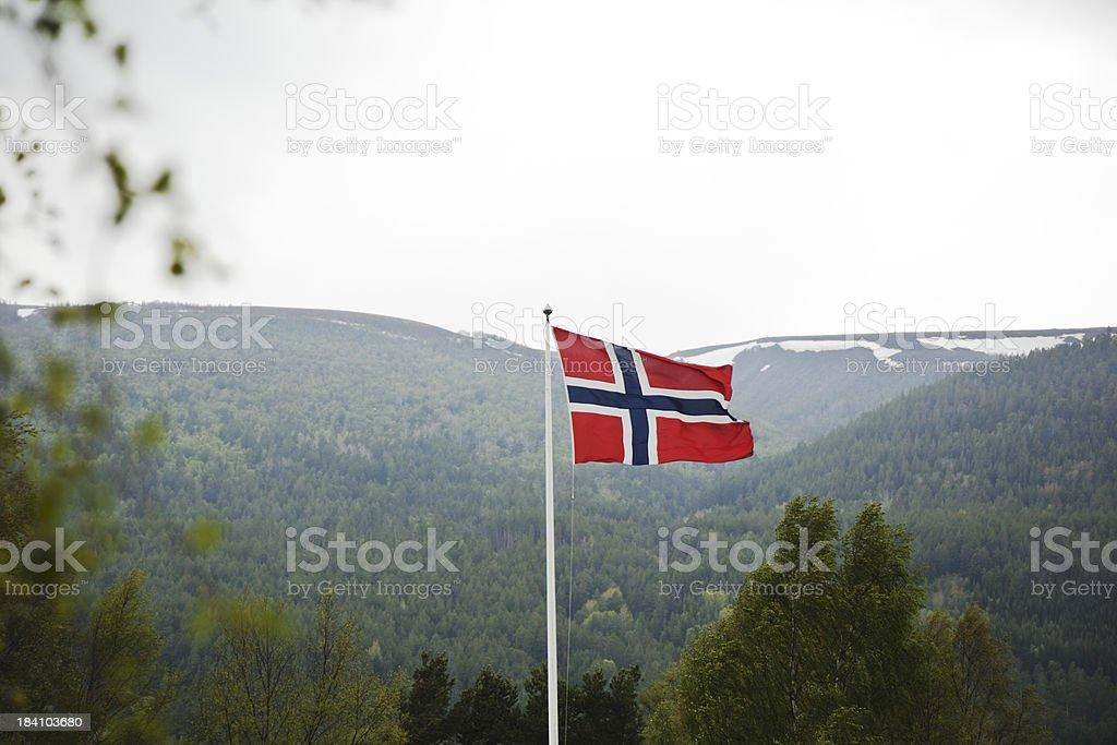 Norwegian flag in spring. stock photo