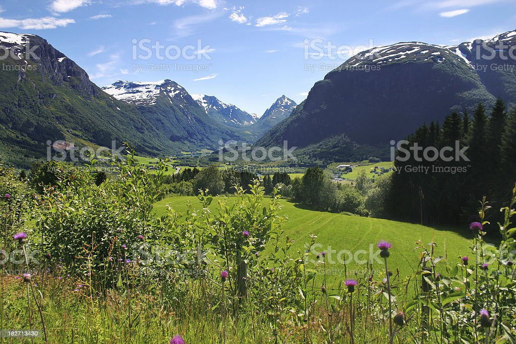 Norwegian mountains and meadows. stock photo